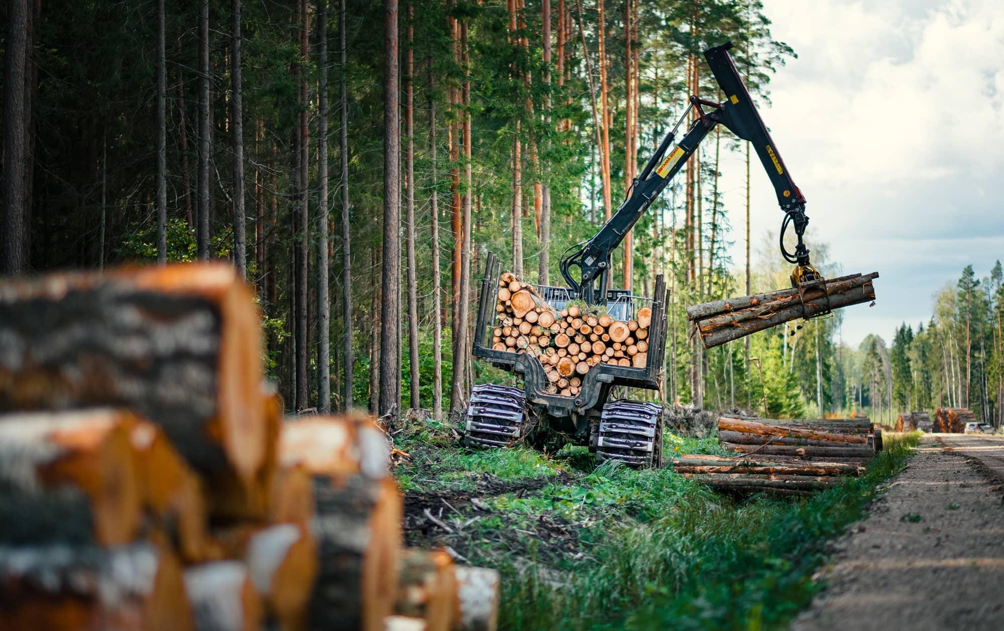 Tatec jobbar med skogsindustrin